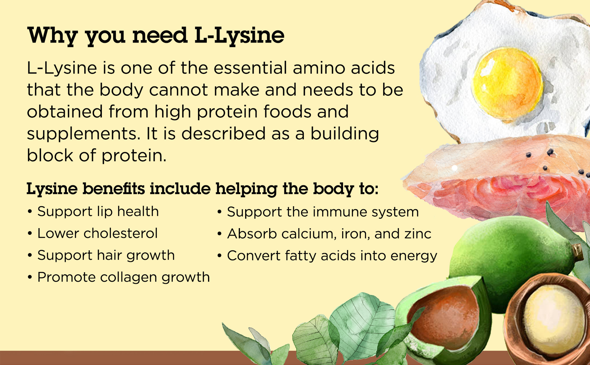 Why your body needs L-Lysine.