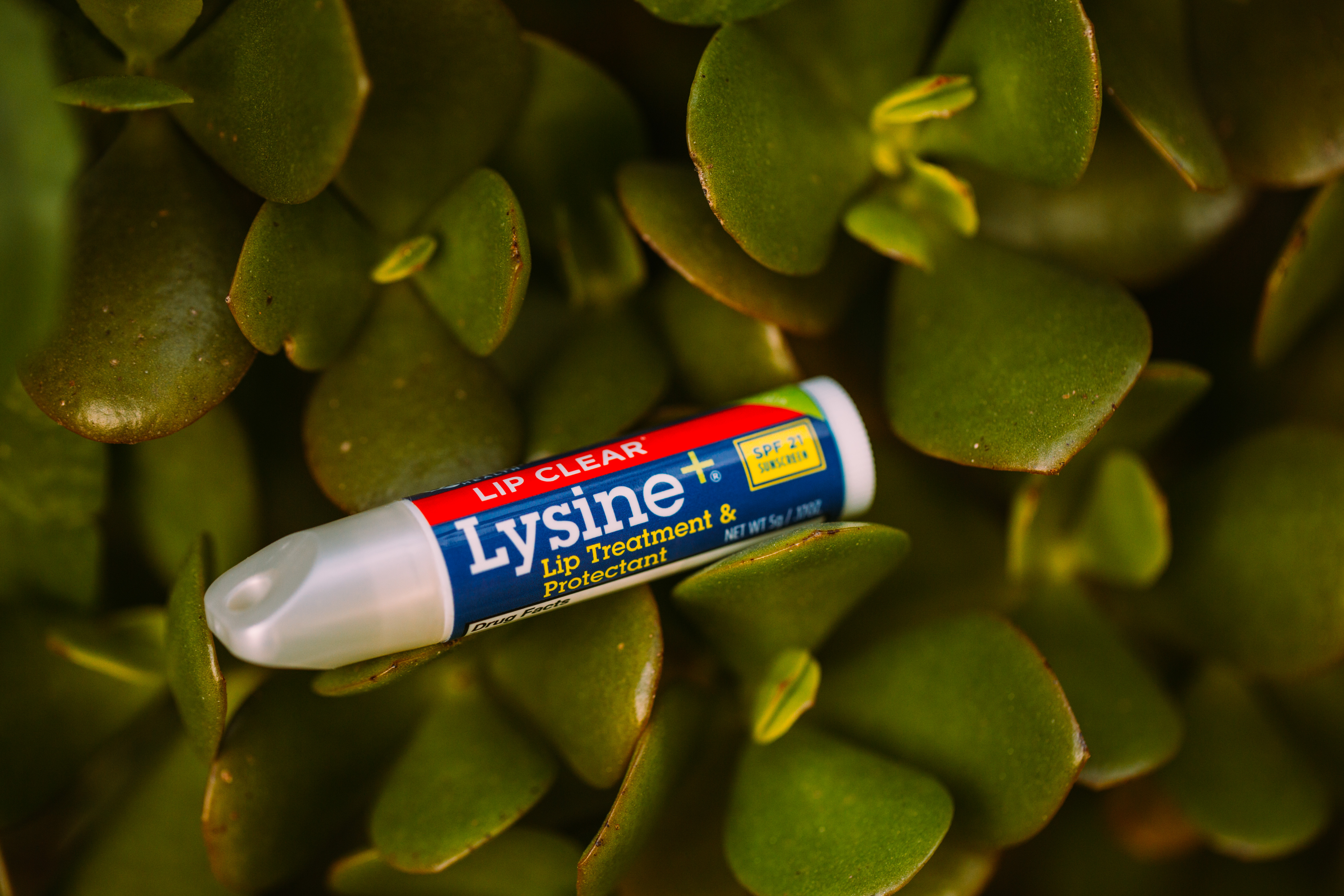Lip Clear Lysine Lip Balm