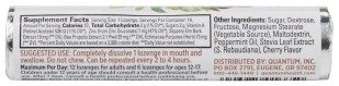 Zinc Echinacea Lozenges for Immune Support